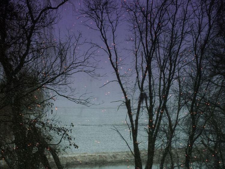 Christmas Season, First Snow, Bon Ivor 179