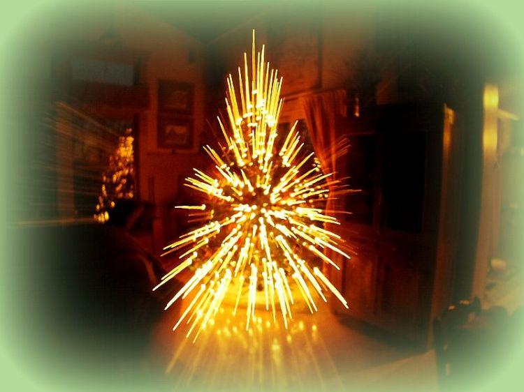 House,  Christmas tree, sunrise 029