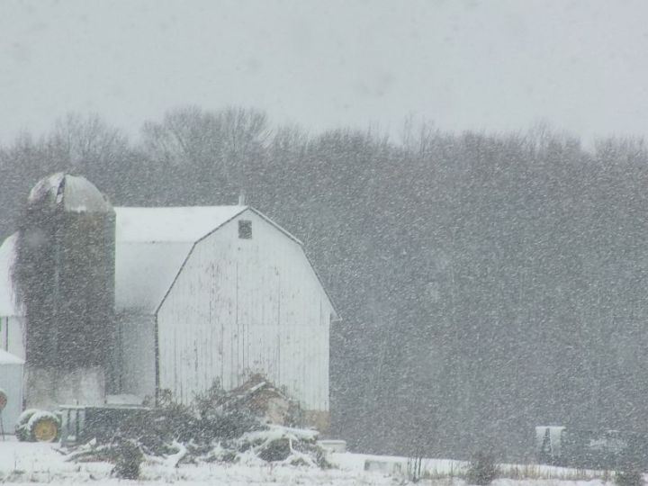 Snowstorm 105