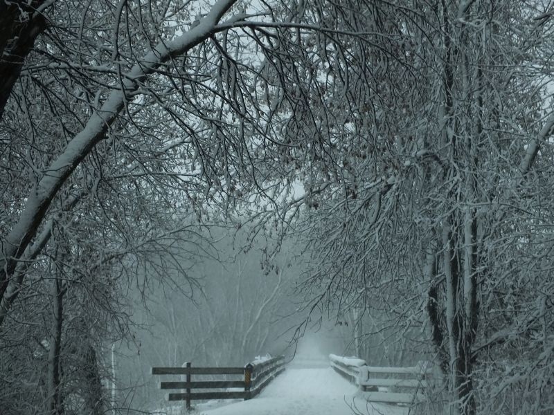 Snowstorm 254