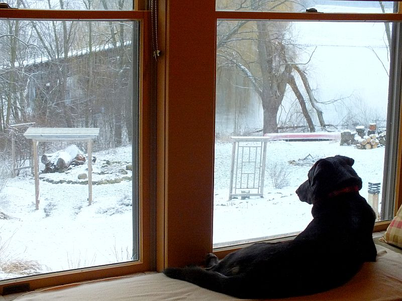 April Snow and High River 018