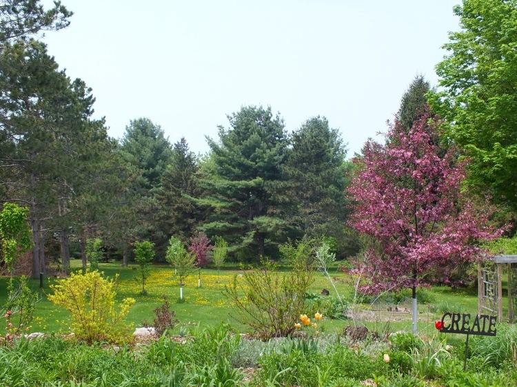 spring gardens, grated finger food, birds 073