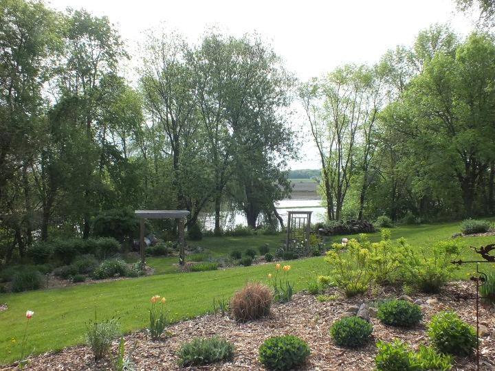 spring gardens, grated finger food, birds 085