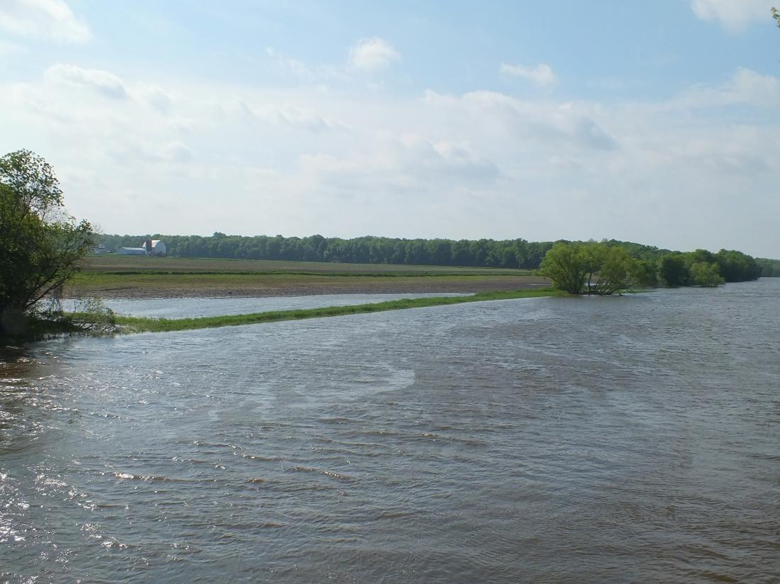 Cat Naps, Gardens, New Bridge, and River Flowing Upstream 064