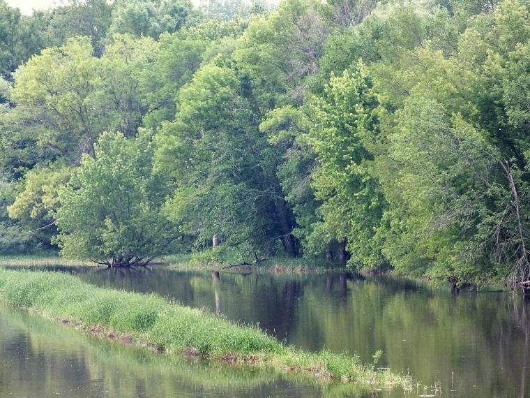 Gardens, Bridge 028