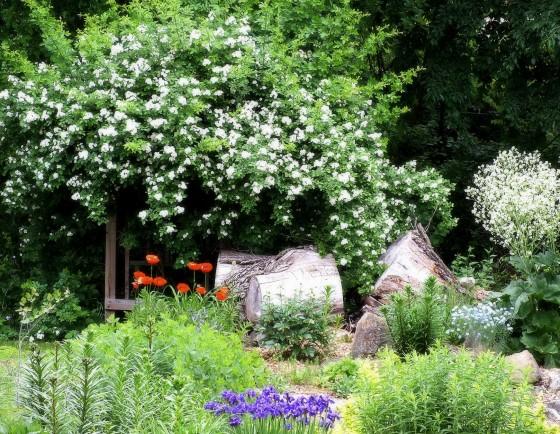 Gardens, Bridge 137