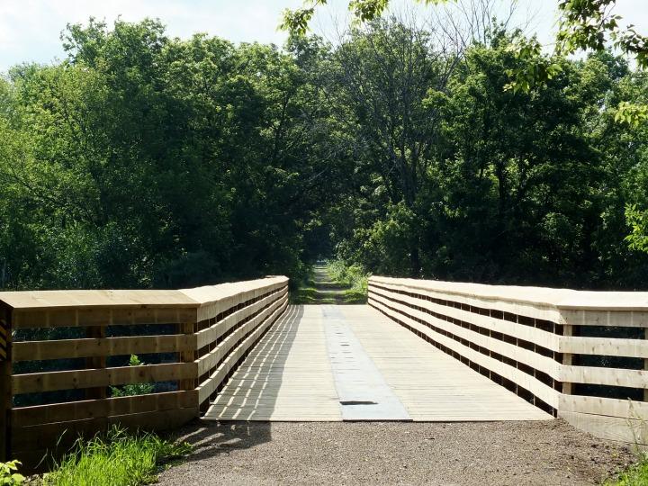Turtle, bike ride, deer, gardens 016