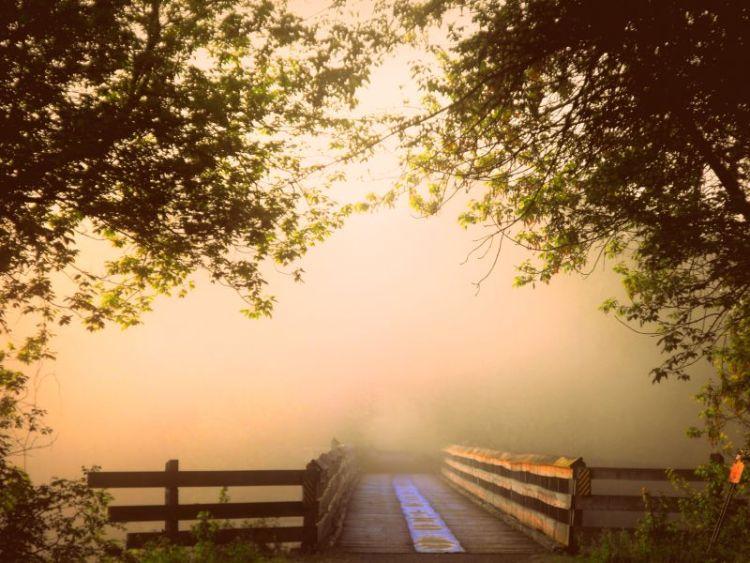 April Bridge Dawn