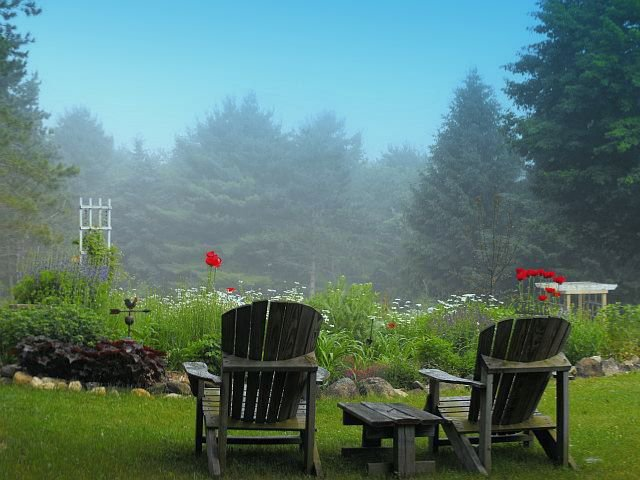 Garden chairs spring